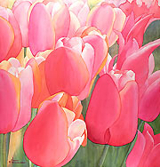 Flower paintings & flower giclee prints
